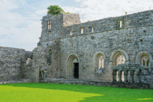 Cong Abbey Cloister remains